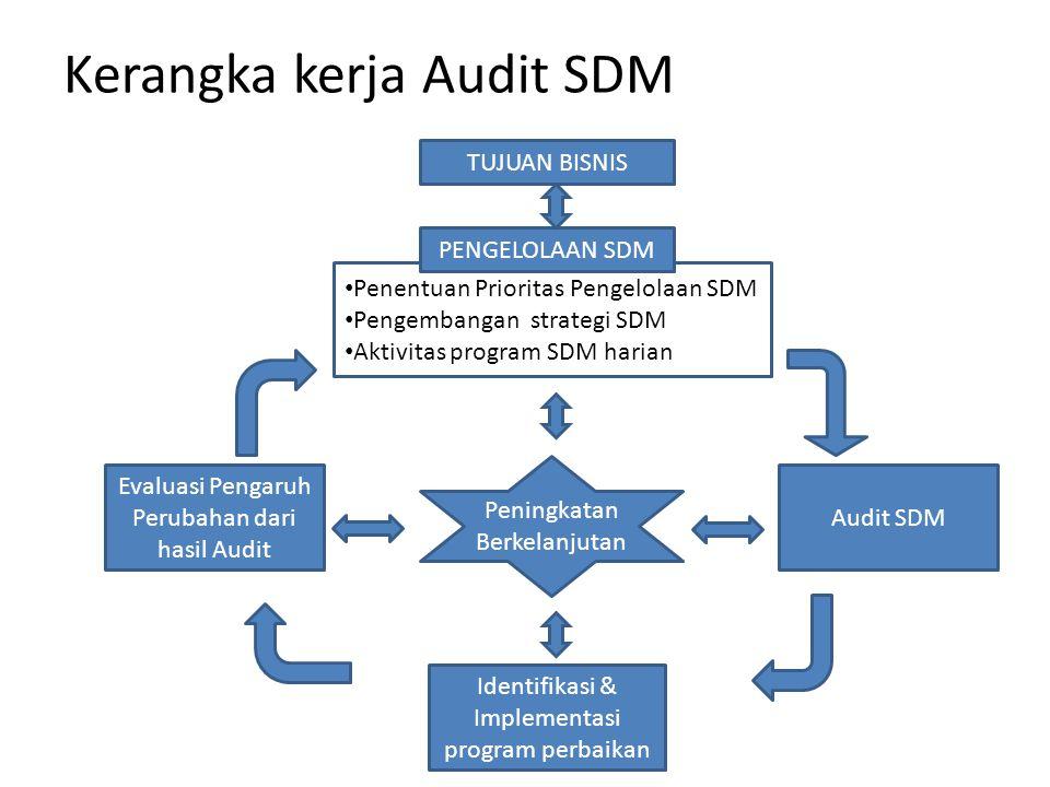 Tujuan audit SDM : 1.Menilai efektififtas dari fungsi SDM 2.Menilai apakah program / aktivitas SDM telah berjalan secara ekonomis, efektif, dan efisien.