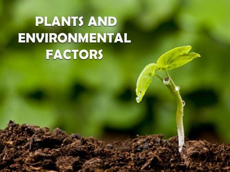 its about.. An understanding of the ways individual plants and their physiology are impacted by different factors of the environment is an essential.