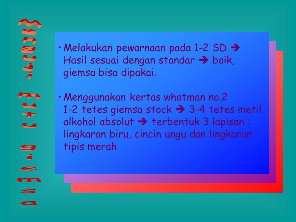 Dapat dibuat dengan 2 cara ; 1 tablet buffer dalam 1 liter aquades 0.7 gr KH 2 PO 4 dan 1 gr Na 2 HPO 4 dalam 1 liter aquades Larutan Buffer (pH 7.2)