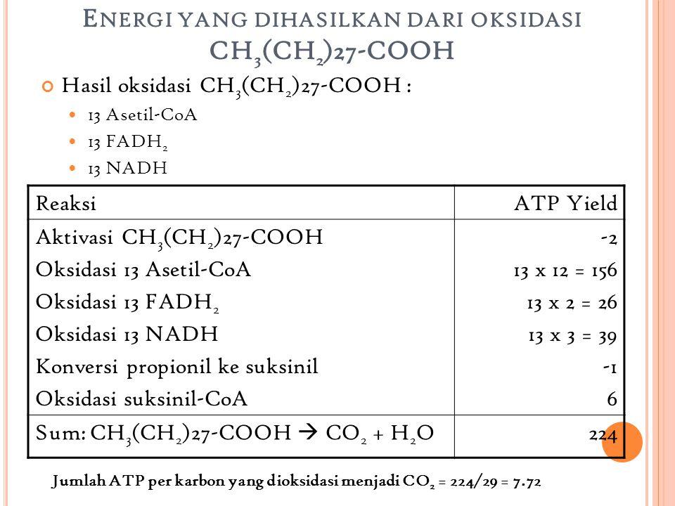 K ESIMPULAN Jumlah energi yang dihasilkan dari degradasi CH 3 (CH 2 )27-COOH adalah 224 ATP