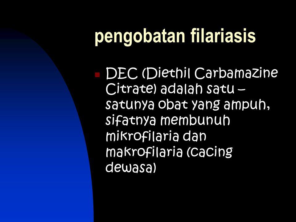 Berita Terkait Di sejumlah negara kasus penyakit filariasis sudah punah, namun di indonesia dilaporkan sampai tahun 2008 masih terdapat 11.699 penderita penyakit kaki gajah / filariasis.