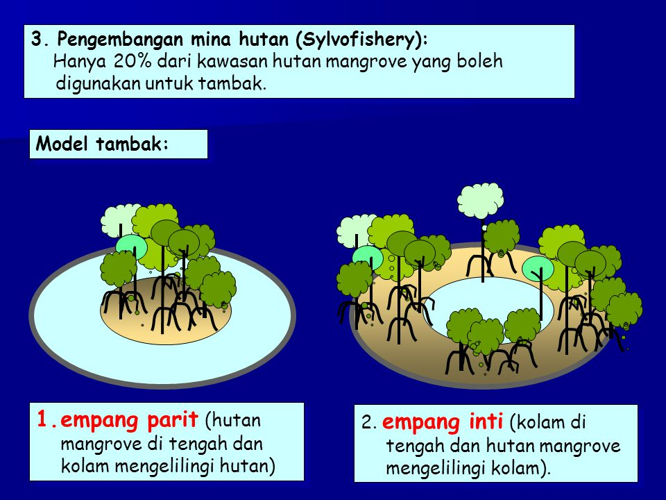 Pemungutan hasil hutan (Silvikultur) Supaya penebangan hutan mangrove dapat dilakukan dengan baik, dapat diterapkan beberapa cara: 1.Tahap penebangan terakhir dilakukan 5 tahun setelah dimulainya penebangan 2.Pada area penebangan harus disisakan pohon induk sebanyak 64 – 100 pohon/ hektar (jumlah pohon tergantung dari tingkat kesuburan lahan).