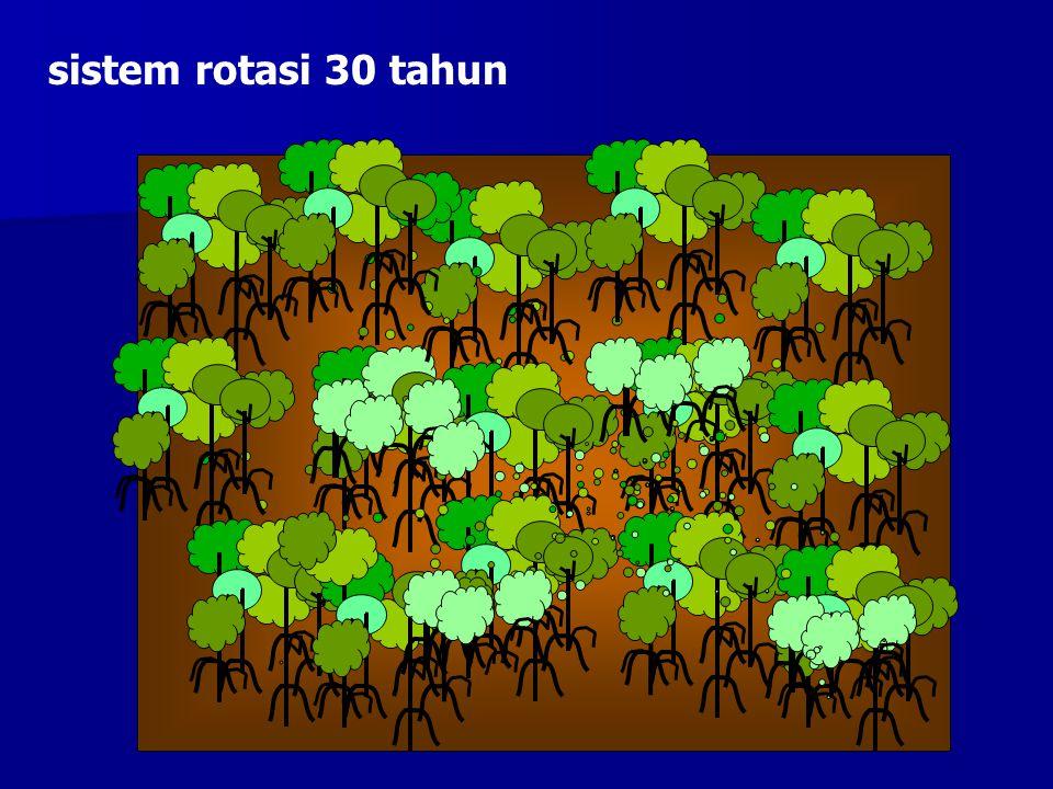 Contoh sustainable management Tambak udang dengan Gei Wei sistem di China Selatan Sistem tambak gei wei: 1.Gei wei adalah kolam dangkal yang dibuat dg cara memagari suatu area di hutan mangrove dengan lumpur.