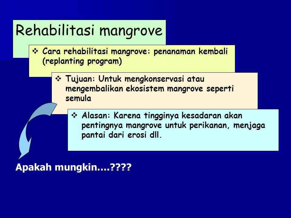 Kelompok 1: Diskusikan dengan teman saudara: Apa yang terjadi dengan hutan mangrove (termasuk tumbuhan, hewan dan lingkungan) bila mangrove tersebut tercemar limbah industri.