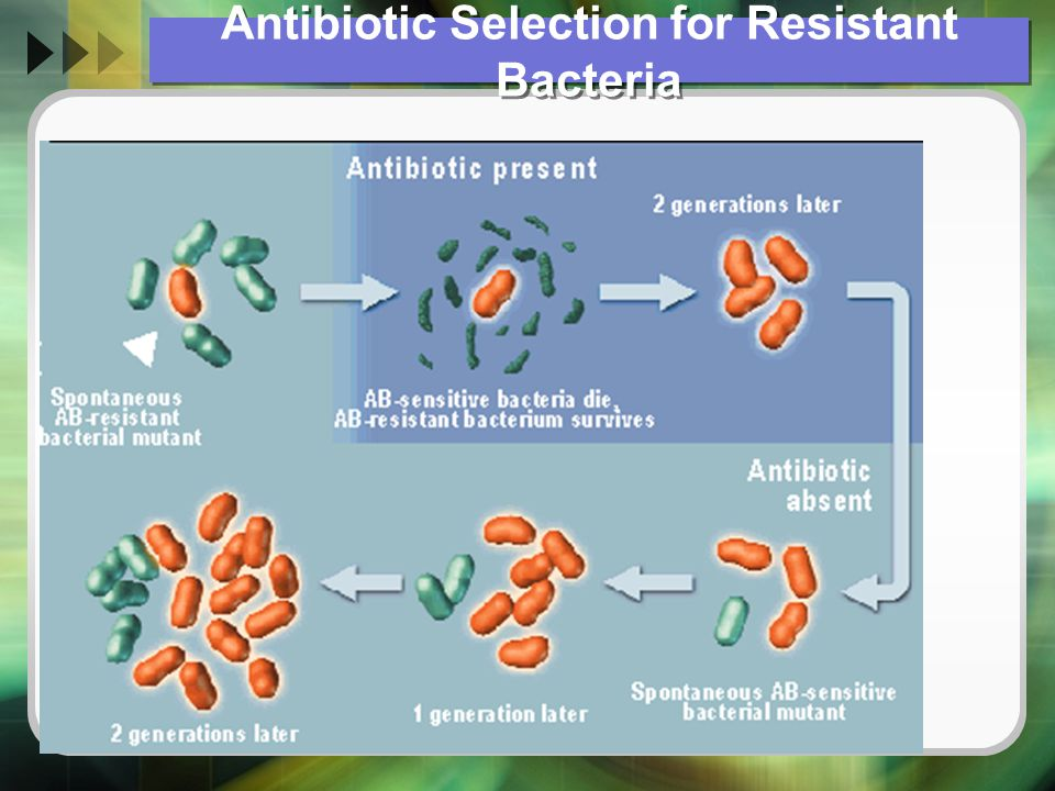 Rangkuman  Pemeriksaan mikrobiologi khususnya biakan dan sensitifitas test sangat berperan dalam menegakkan suatu penyakit infeksi  Handling dan koleksi spesimen haruslah mengikuti kaidah yang sudah ditentukan  Pelaporan peta medan kuman disetiap RS dengan rutin sangat mendukung dalam pengelolaan pasien infeksi di RS tersebut  Penentuan pemberian antibiotik berdasarkan hasil biakan haruslah hati-hati, mengingat kadang ada perbedaan antara invivo dan invitro