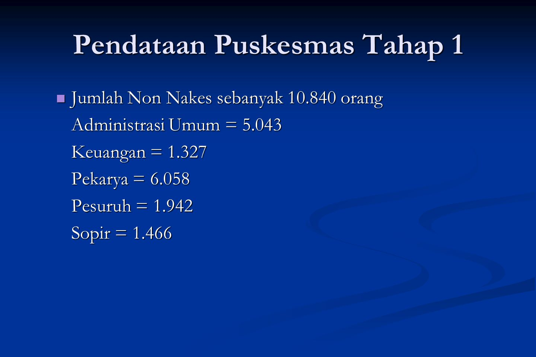 Pendataan Puskesmas Tahap 2 Pendataan Puskesmas tahap 2 adalah Sensus Puskesmas di Indonesia dengan variabel lebih banyak daripada Pendataan Puskesmas tahap 1.