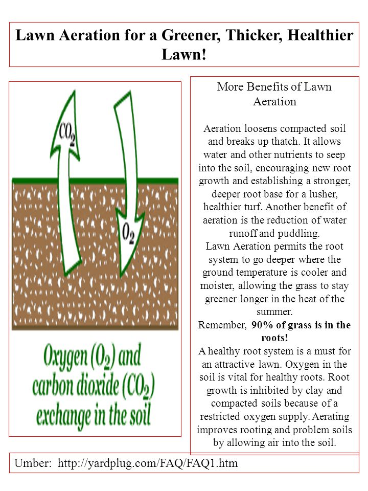 Lawn Aeration for a Greener, Thicker, Healthier Lawn.