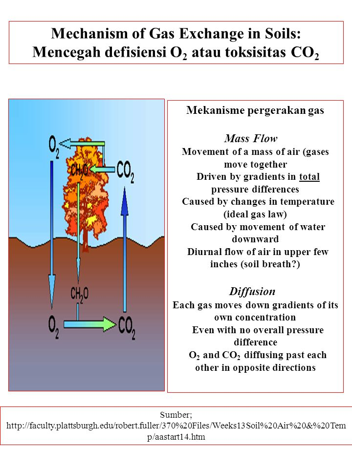 Mechanism of Gas Exchange in Soils: Mencegah defisiensi O 2 atau toksisitas CO 2 Sumber; http://faculty.plattsburgh.edu/robert.fuller/370%20Files/Weeks13Soil%20Air%20&%20Tem p/aastart14.htm Mekanisme pergerakan gas Mass Flow Movement of a mass of air (gases move together Driven by gradients in total pressure differences Caused by changes in temperature (ideal gas law) Caused by movement of water downward Diurnal flow of air in upper few inches (soil breath?) Diffusion Each gas moves down gradients of its own concentration Even with no overall pressure difference O 2 and CO 2 diffusing past each other in opposite directions