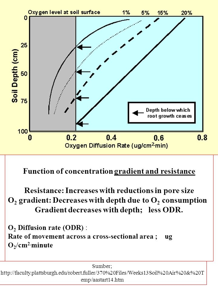 Function of concentration gradient and resistance Resistance: Increases with reductions in pore size O 2 gradient: Decreases with depth due to O 2 consumption Gradient decreases with depth; less ODR.