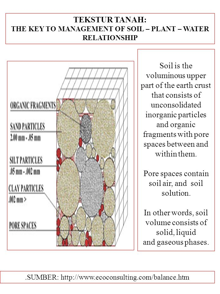 TEKSTUR TANAH: THE KEY TO MANAGEMENT OF SOIL – PLANT – WATER RELATIONSHIP.SUMBER: http://www.ecoconsulting.com/balance.htm Soil is the voluminous upper part of the earth crust that consists of unconsolidated inorganic particles and organic fragments with pore spaces between and within them.