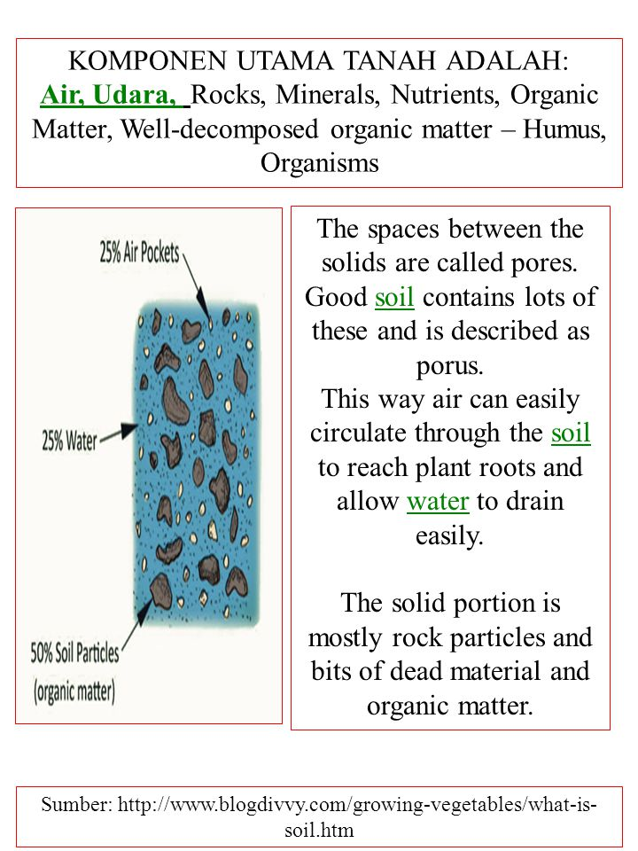 KOMPONEN UTAMA TANAH ADALAH: Air, Udara, Air, Udara, Rocks, Minerals, Nutrients, Organic Matter, Well-decomposed organic matter – Humus, Organisms The spaces between the solids are called pores.