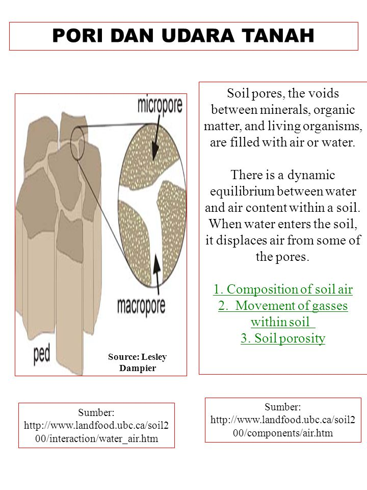 PORI DAN UDARA TANAH Sumber: http://www.landfood.ubc.ca/soil2 00/components/air.htm Soil pores, the voids between minerals, organic matter, and living organisms, are filled with air or water.