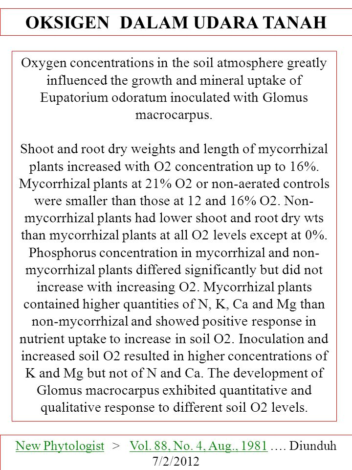 Oxygen concentrations in the soil atmosphere greatly influenced the growth and mineral uptake of Eupatorium odoratum inoculated with Glomus macrocarpus.