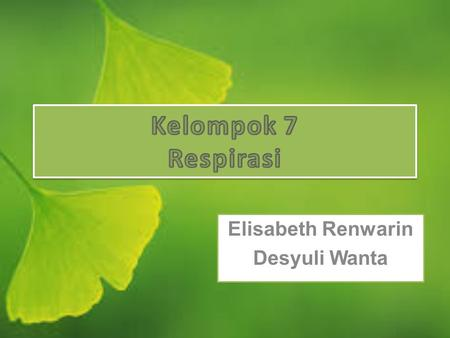 Elisabeth Renwarin Desyuli Wanta. OVERVIEW OF PLANT RESPIRATION Aerobic respiration is the biological process by which reduced organic compounds are mobilized.