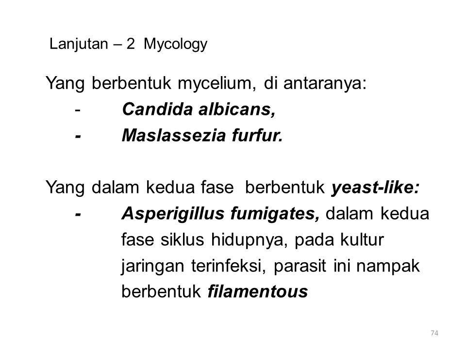 FUNGI DAN PENYAKIT Menimbulkan sakit melalui 4 (empat) jalan: Pertama: Fungi bisa menghasilkan toksin yang bisa berlangsung menimbulkan kondisi keracunan setelah dimakan.
