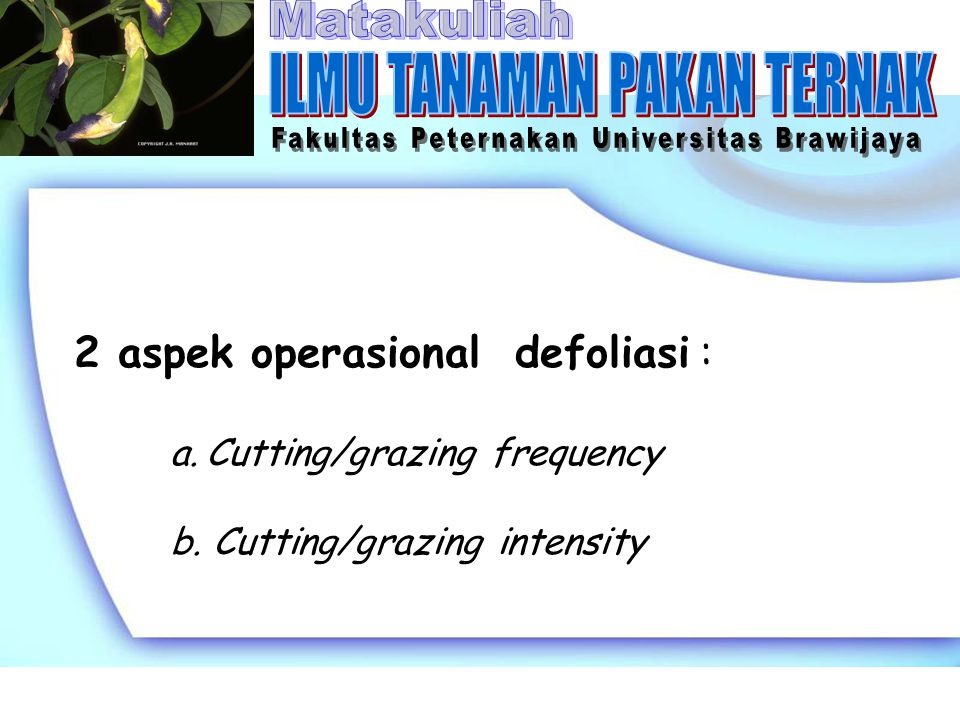a.Cutting/grazing frequency adalah ulangan pemotongan/ penggembalaan yang dilakukan terhadap tanaman pakan.