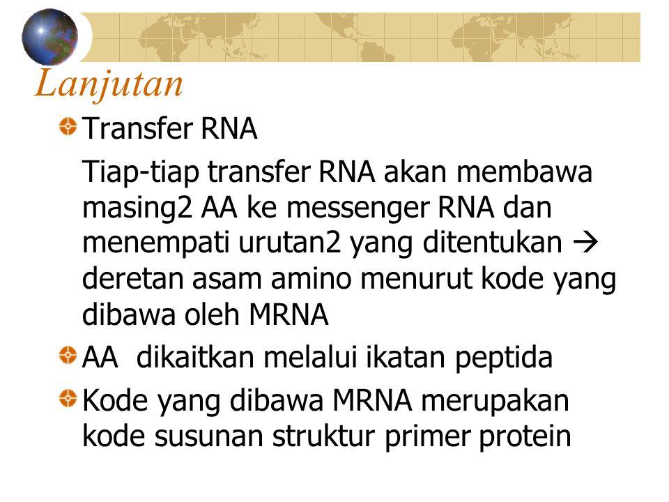 lanjutan Pembentukan rantai peptida Jaringan AA yang dibawa transfer RNA membentuk rantai peptida satu dengan yang lain  polipeptida  struktur primer protein disintesa  melepaskan diri dari ribosoma Bereaksi dengan gaya sekunder  protein sekunder Bereaksi dengan gaya tertier  protein kompleks