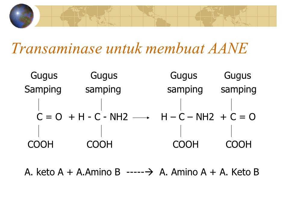 ASAM AMINO  ENERGI 1.Asam amino  piruvat  glukosa: asam amino glukogenik (alanin, serin, glisin, sistein, metionin, triptophan) 2.Asam amino  asetil KoA  lemak : Asam amino ketogenik (fenilalanin, tirosin, leusin, isoleusin, lisin) 3.