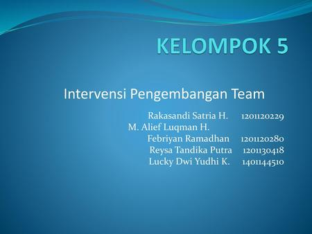 Intervensi Pengembangan Team
