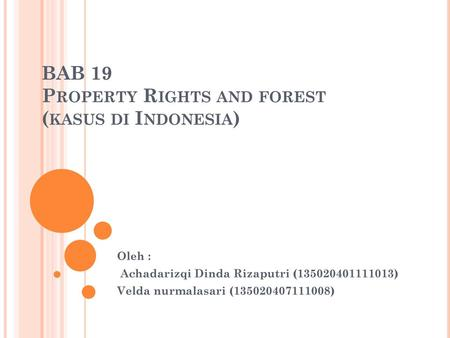 BAB 19 Property Rights and forest (kasus di Indonesia)