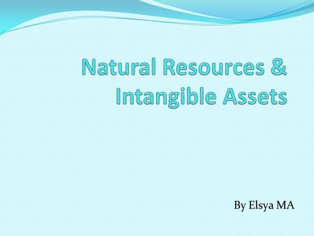 Natural Resources & Intangible Assets