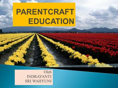 PARENTCRAFT EDUCATION