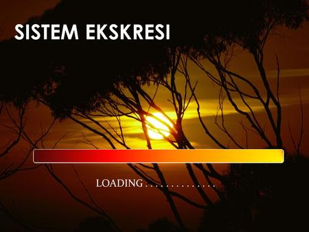 SISTEM EKSKRESI LOADING............... MATERI ANIMASI VIDEO KUIS.