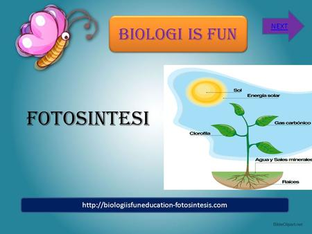 FOTOSINTESI BIOLOGI IS FUN NEXT