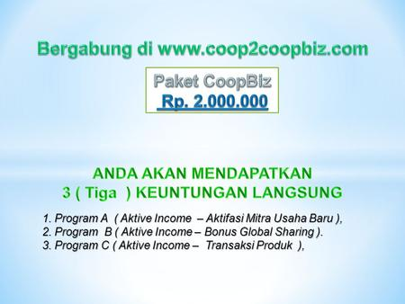 1. Program A ( Aktive Income – Aktifasi Mitra Usaha Baru ), 2. Program B ( Aktive Income – Bonus Global Sharing ). 3. Program C ( Aktive Income – Transaksi.