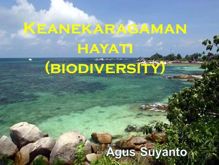 Copyright © 2005 Pearson Education, Inc. publishing as Benjamin Cummings Keanekaragaman hayati (biodiversity)
