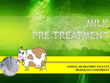 Milk pre treatment ANIMAL HUSBANDRY FACULTY BRAWIJAYA UNIVERSITY.