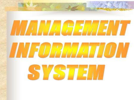 MANAGEMENT INFORMATION SYSTEM.