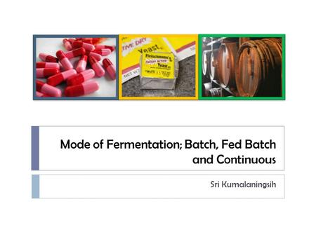 Mode of Fermentation; Batch, Fed Batch and Continuous Sri Kumalaningsih.