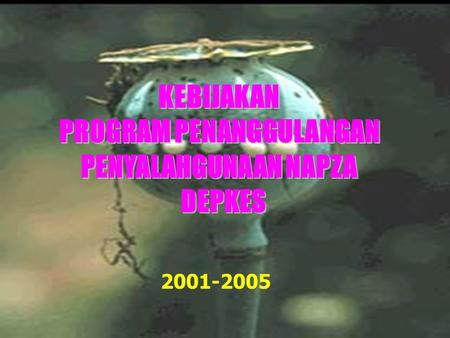 PROGRAM PENANGGULANGAN