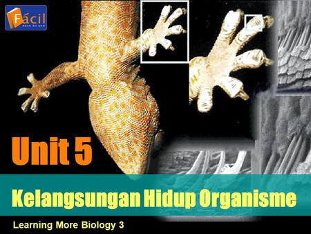 Kelangsungan Hidup Organisme Unit 5 Learning More Biology 3.