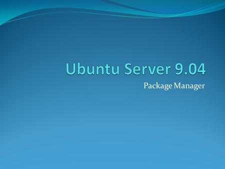 Ubuntu Server 9.04 Package Manager.