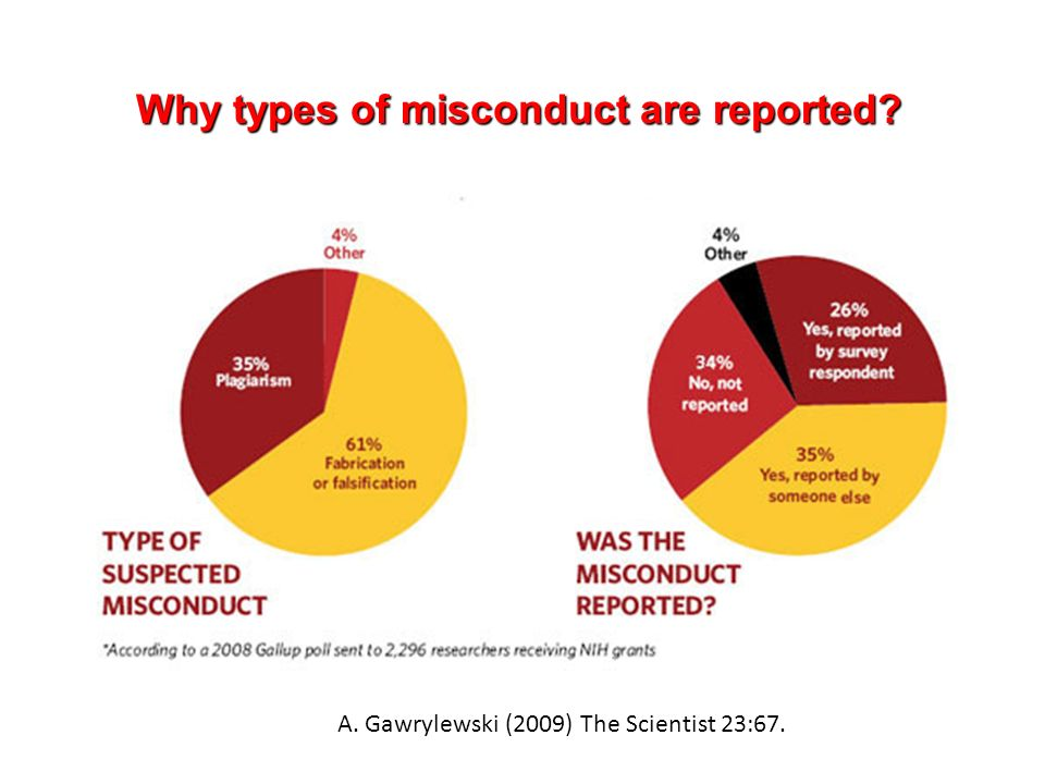Why types of misconduct are reported