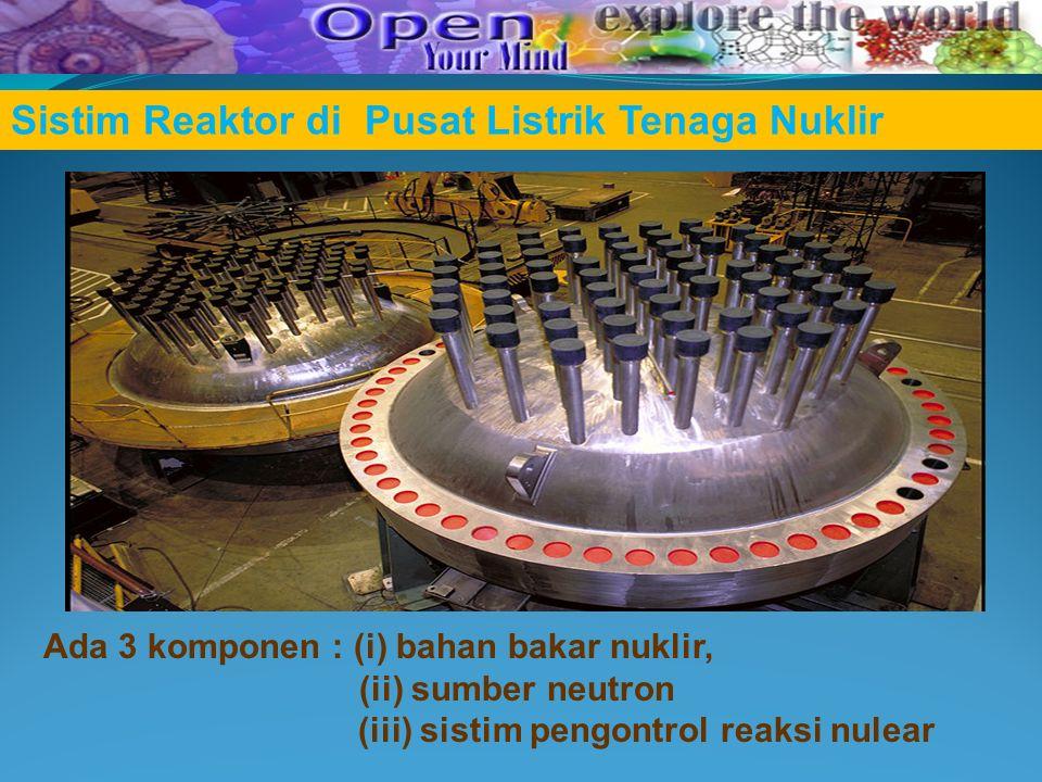 Sistim Reaktor di Pusat Listrik Tenaga Nuklir