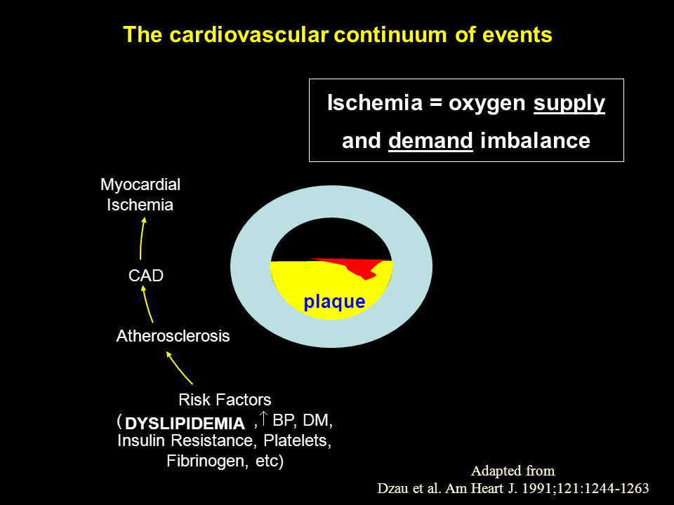 The cardiovascular continuum of events