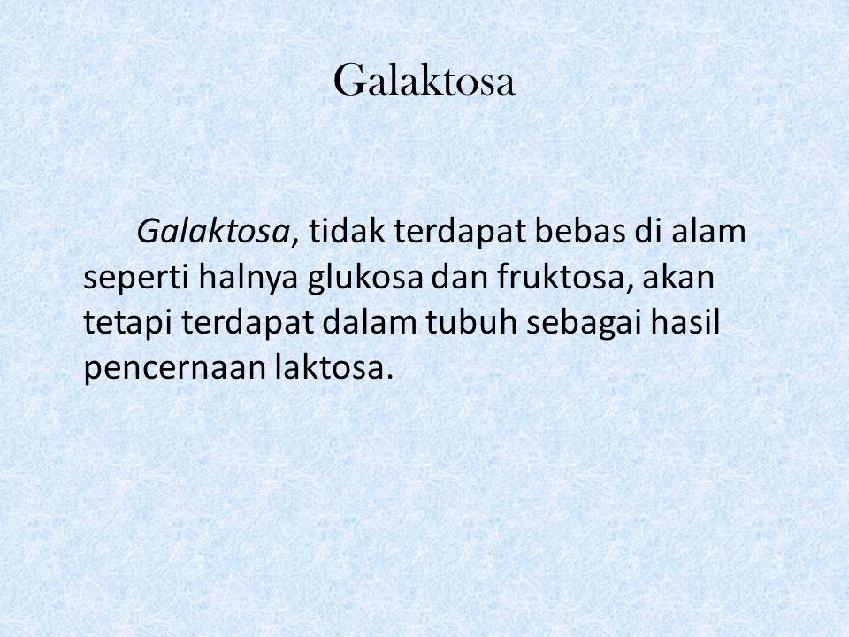 Galaktosa