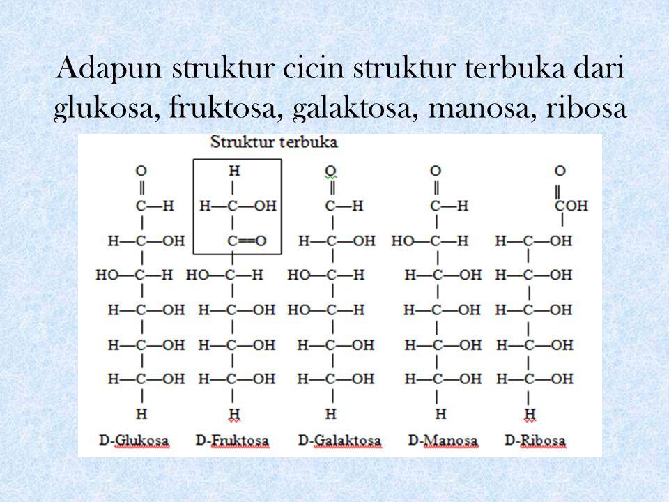 Adapun struktur cicin struktur terbuka dari glukosa, fruktosa, galaktosa, manosa, ribosa
