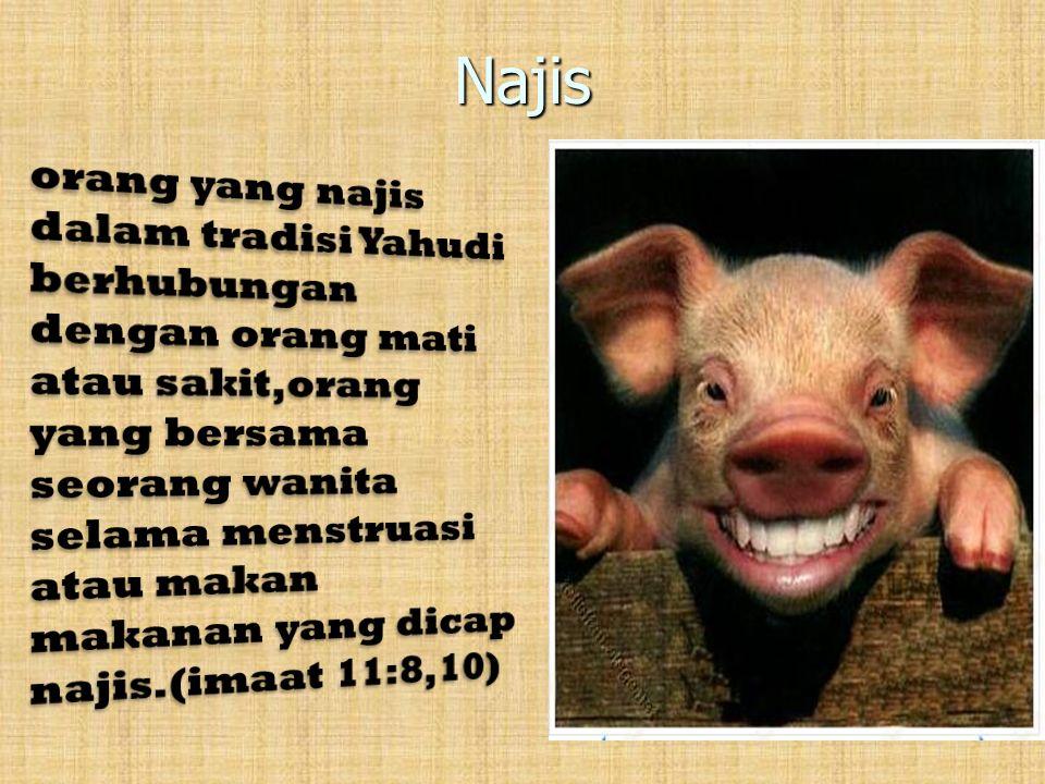 Najis