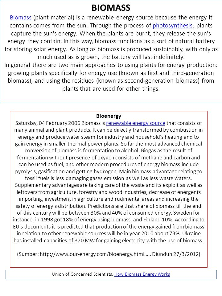 Union of Concerned Scientists. How Biomass Energy Works