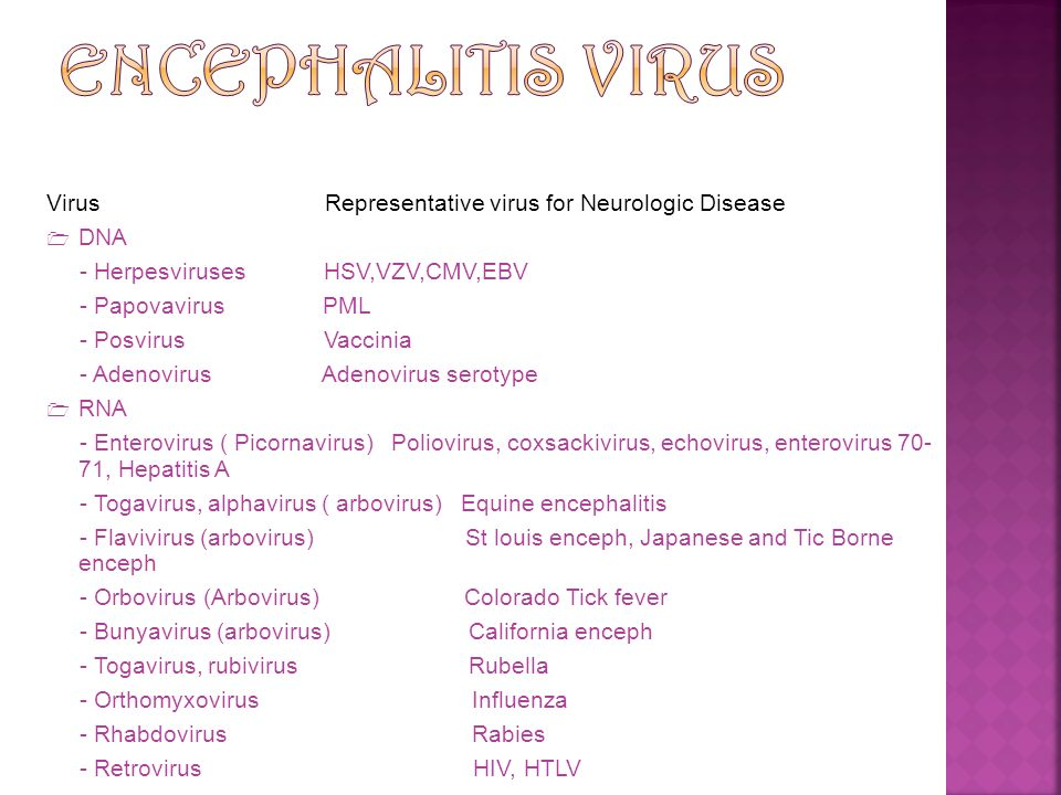 ENCEPHALITIS VIRUS Virus Representative virus for Neurologic Disease