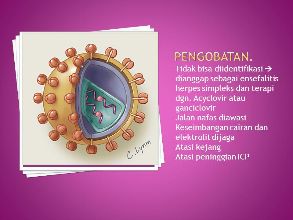 Pengobatan. Tidak bisa diidentifikasi  dianggap sebagai ensefalitis herpes simpleks dan terapi dgn. Acyclovir atau ganciclovir.