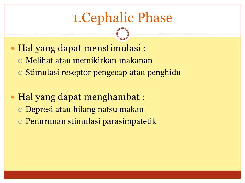 1.Cephalic Phase Hal yang dapat menstimulasi :