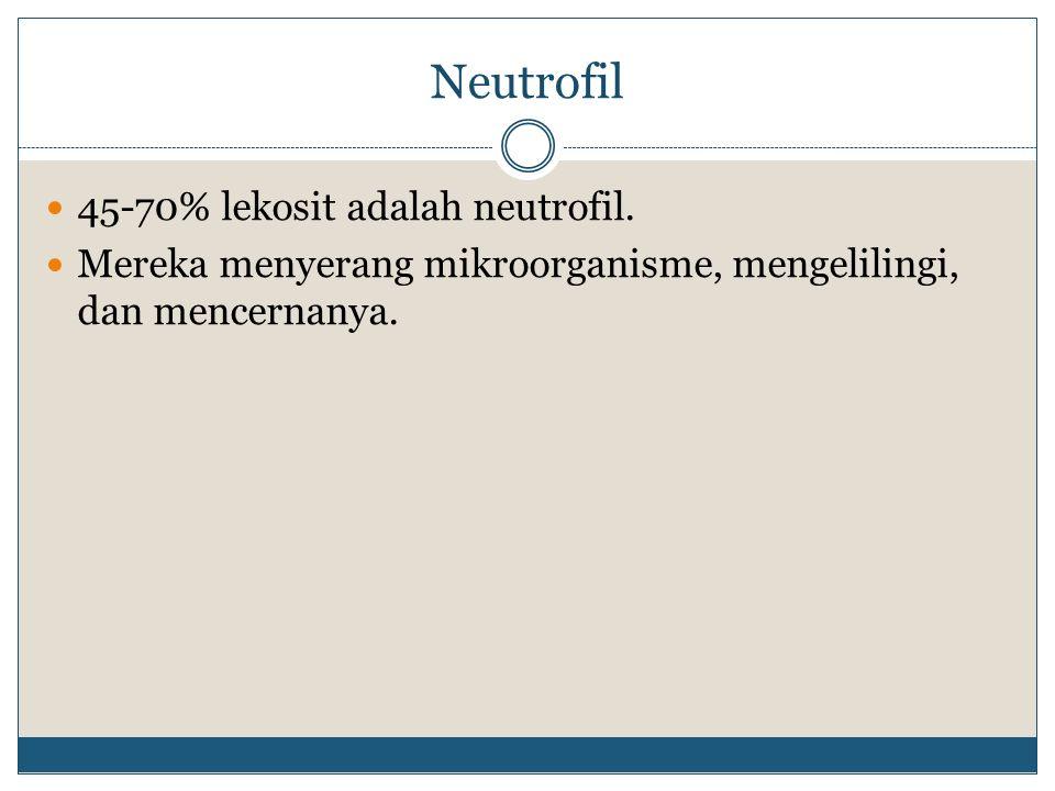 Neutrofil 45-70% lekosit adalah neutrofil.
