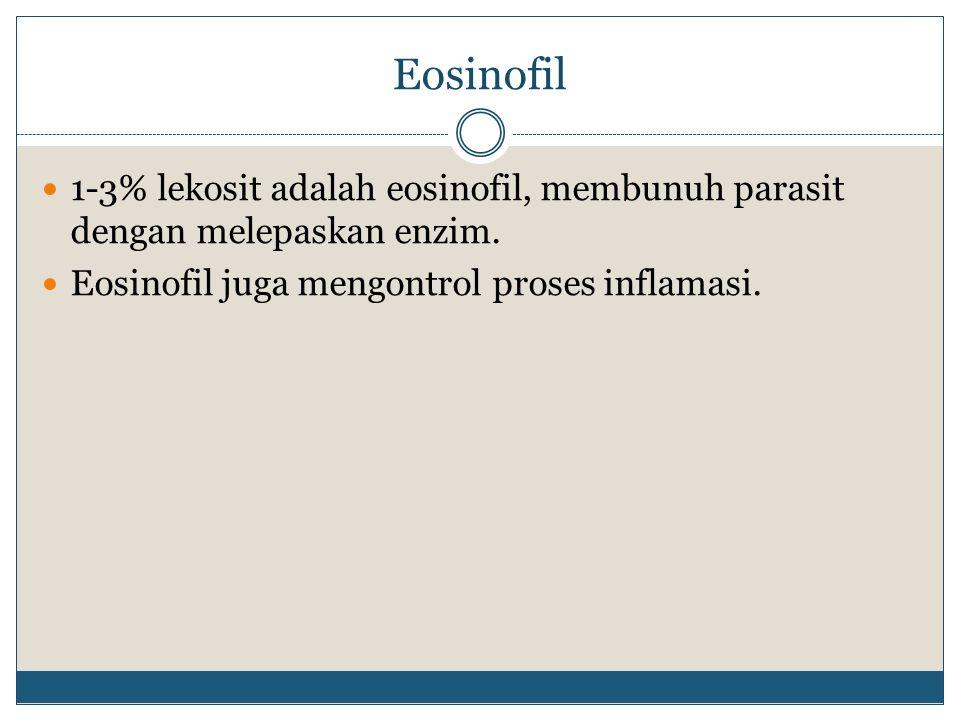 Eosinofil 1-3% lekosit adalah eosinofil, membunuh parasit dengan melepaskan enzim.