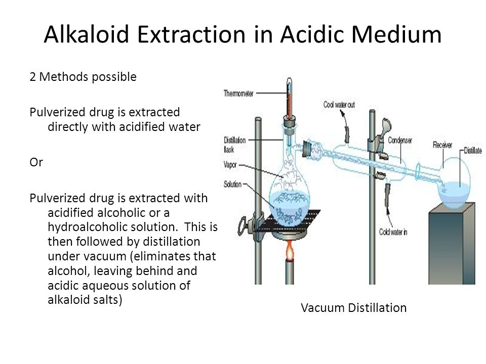 Alkaloid Extraction in Acidic Medium
