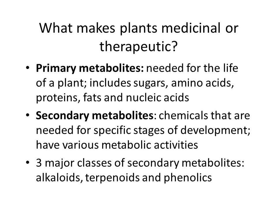 What makes plants medicinal or therapeutic